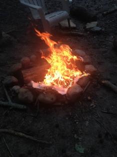 flames 014